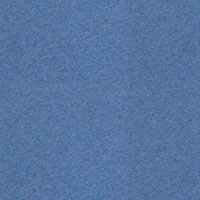 Blue marl FS 2010