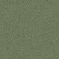 Pale Green marl FS 3001