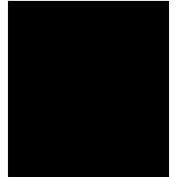 Black-FS-4001